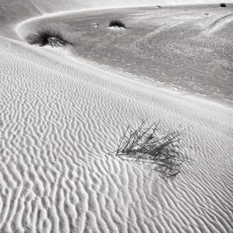 White Sands National Monument, near Alamogordo, NM