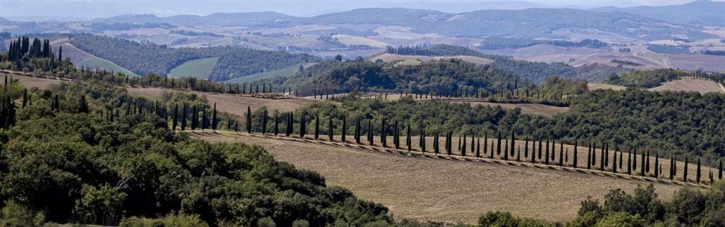 Near Siena, Italy.