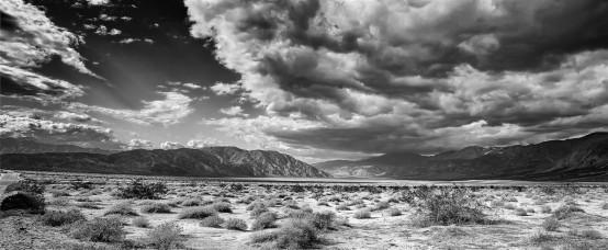Anza Borrego Desert State Park, CA.