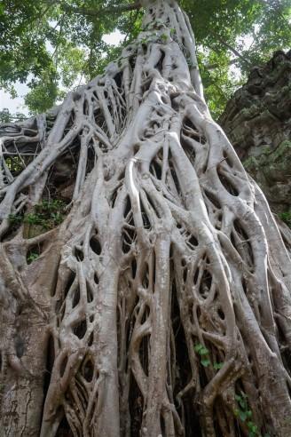 Angkor Province, Cambodia